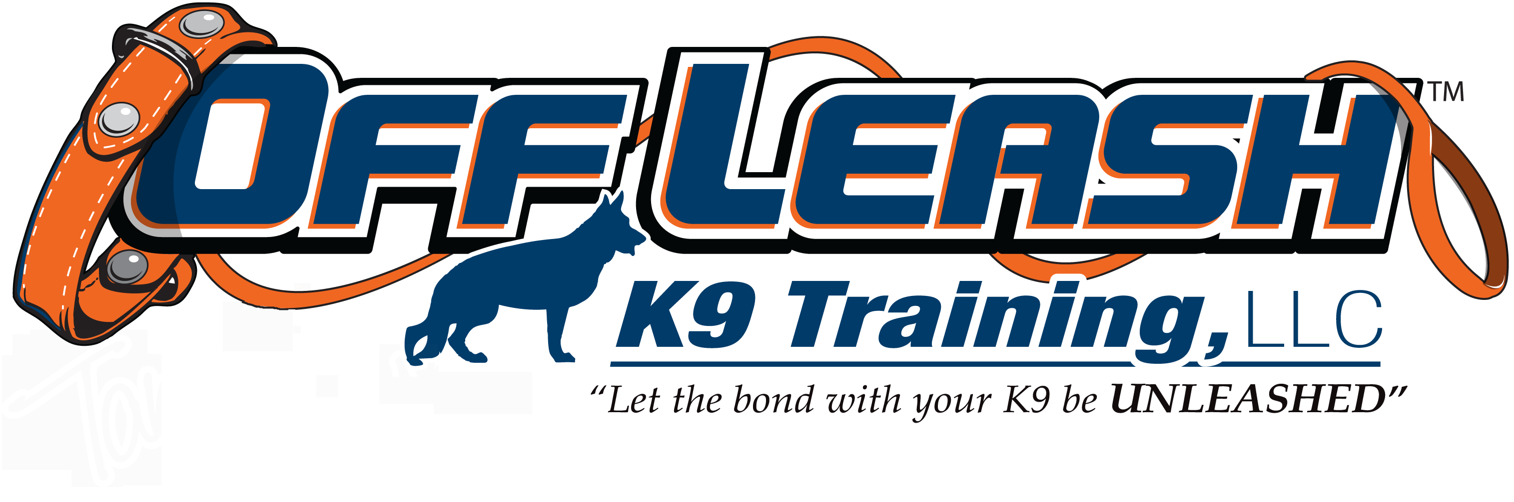 Tacoma Offleash K9 Dog Training